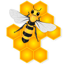 Vector Illustration Of Honey B...