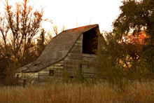 Huge Old Wood Barn With The Hayloft Door Open Surrounded By Tall Prairie Grass