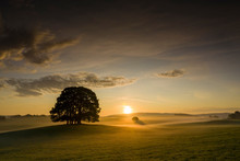 Sunrise Over A Tree In The Yorkshire Dales