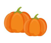 Pumpkin In Harvest On White Ba...