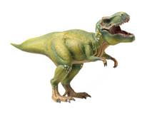 Green Tyrannosaurus On White B...