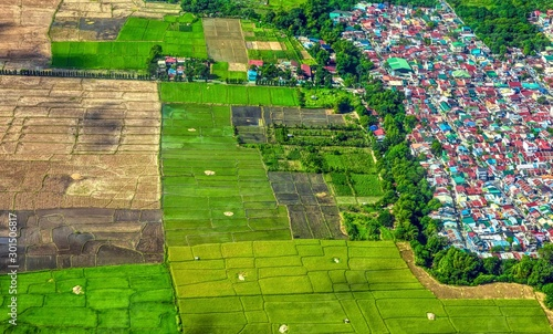 Aerial view showing expansion of urbanization and mass housing into agricultural land and rice fields in southeast Asia Wallpaper Mural