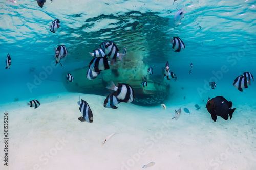 ocean-scene-with-wreck-of-boat-at-sandy-bottom-and-school-of-fish-underwater-in-mauritius