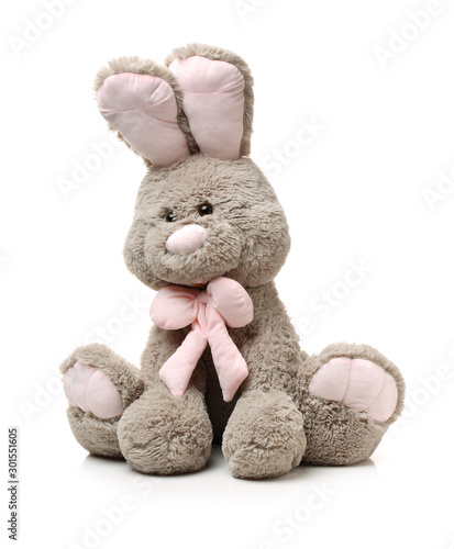 Old rabbit toy isolated on wood background Canvas