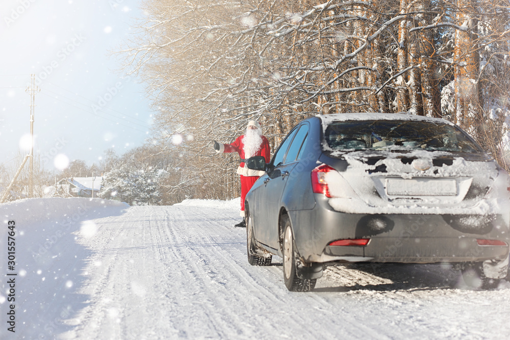 Fototapety, obrazy: Santa Claus comes with gifts from the outdoor. Santa in a red suit with a beard and wearing glasses is walking along the road to Christmas. Father Christmas brings gifts to children.
