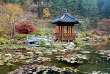 The Garden Of Morning Calm, Seoul, Korea