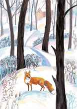 Winter Watercolor Pattern Or P...