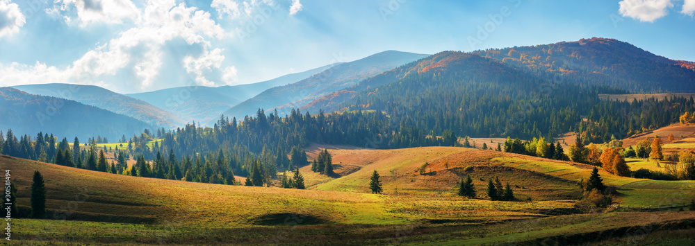 Fototapeta rural area of carpathian mountains in autumn. wonderful panorama of borzhava mountains in dappled light observed from podobovets village. agricultural fields on rolling hills near the spruce forest