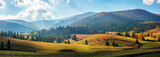Fototapeta Las - rural area of carpathian mountains in autumn. wonderful panorama of borzhava mountains in dappled light observed from podobovets village. agricultural fields on rolling hills near the spruce forest