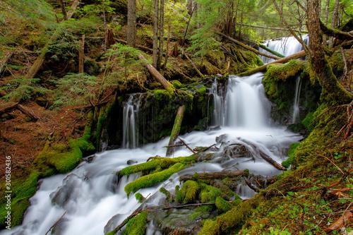 Big Spring Creek Waterfall, Washington