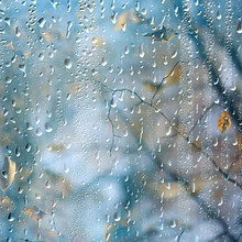 Rain Window Autumn Park Branches Leaves Yellow / Abstract Autumn Background, Landscape In A Rainy Window, Weather October Rain