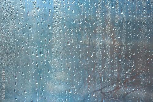 Foto auf Leinwand Wasserfalle autumn wet glass background / autumn branches outside the window, rain, wet weather, concept seasonal background