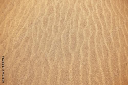 background sand desert / abstract empty background, texture desert sand, waves on, sand dunes