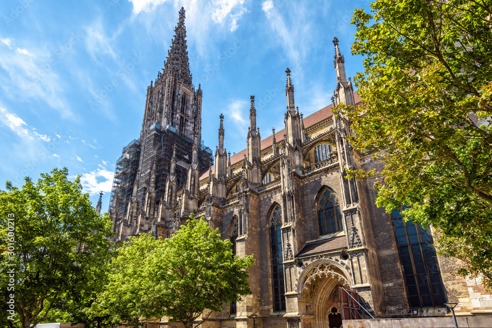 Fototapeta Ulm Minster or Cathedral of Ulm city, Germany. It is a famous landmark of Ulm. Panorama of ornate facade of Gothic church in summer. Scenery of medieval European architecture on sunny day.