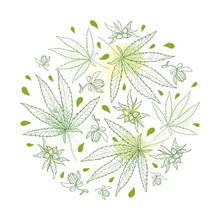 Round Bunch Of Outline Cannabis Sativa Or Cannabis Indica Or Marijuana. Leaf, Flower And Seed In Pastel Green Isolated On White Background.