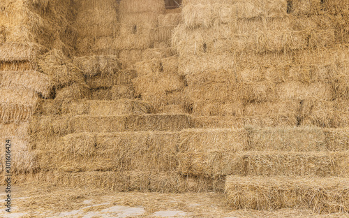 dry rice haystack in the mow Tablou Canvas
