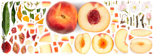 Peach Collection Abstract - 301620283