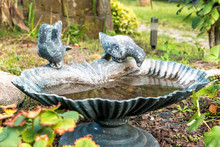Bird Bath In The Garden