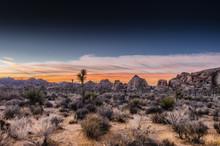 Desert Scene At Sunset