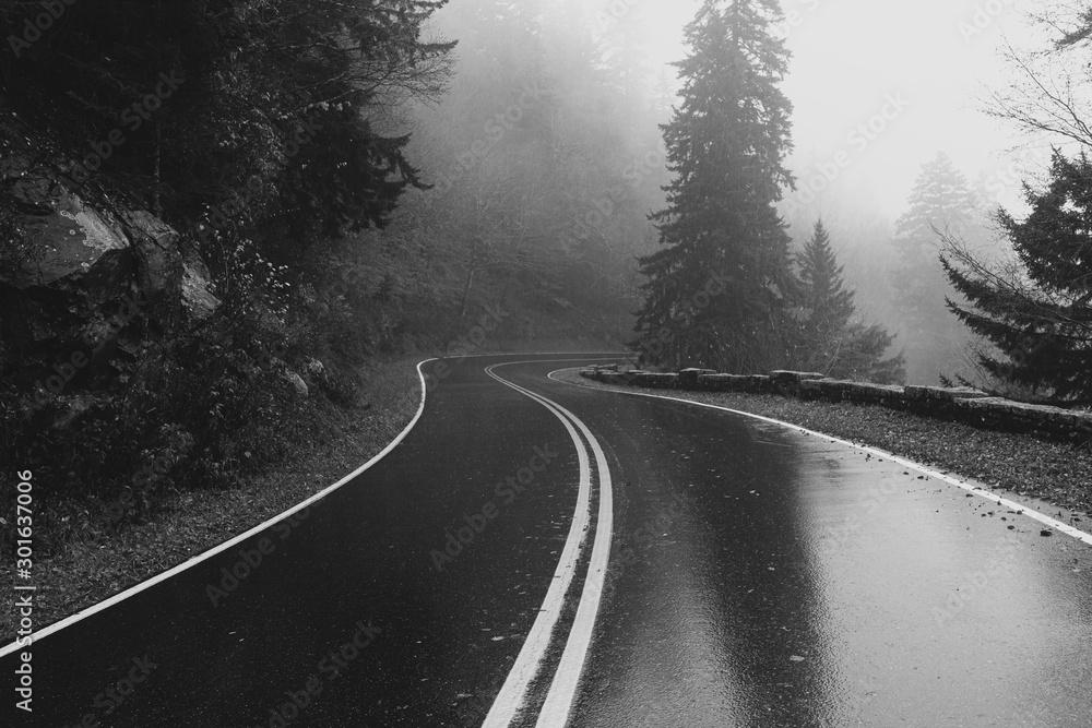 Fototapeta road in winter