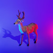 canvas print picture - Modern conceptual art deer with shadow in duotone pink and blue lights.