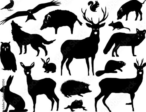 Obraz Wild Animals Forest Landscape Vector Silhouette - fototapety do salonu