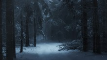 Blue Winter Forest Snowy Night 4K Loop Features A Dark Snowy Forest With A Blue Cast With Snowflakes Falling And Light Fog Blowing In A Loop