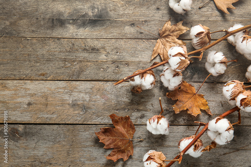 Obraz Beautiful cotton branches and autumn leaves on wooden background - fototapety do salonu