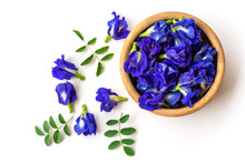 Close Up Fresh Butterfly Pea Flower Or Blue Pea, Bluebellvine , Cordofan Pea, Clitoria Ternatea With Green Leaf In Wooden Bowl Isolated On White Background. Top View. Flat Lay.