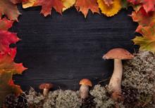 Autumn Background With Mushroo...