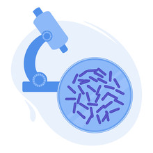 Rod-shaped Escherichia Coli Bacteria In A Petri Dish Under The Microscope In A Laboratory. Medical Research Of Microbes. Lab Tools For Scientific Experiment. Biochemistry And Analysis Vector Concept.