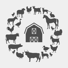 Farm Animals Silhouettes. Horse, Cow, Sheep, Bull, Donkey, Pig, Goat, Rabbit, Cat, Dog, Goose, Chicken, Duck, Rooster, Turkey Vector Silhouettes