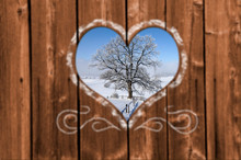 Looking Through A Carved Heart In A Wooden Wall To An Single Tree With Hoarfrost