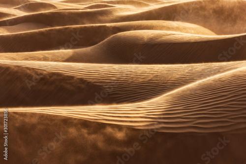 Fotografia Windswept desert sand dunes.