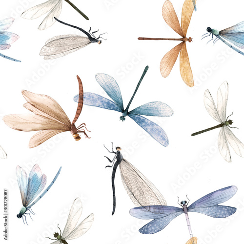 Fotografia  Watercolor summer dragonfly insect colourful seamless pattern