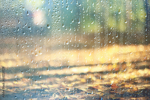 Fototapeta background wet glass drops autumn in the park / view of the landscape in the autumn park from a wet window, the concept of rainy weather on an autumn day obraz