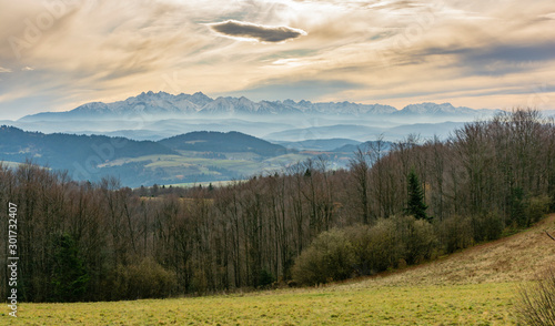 Fototapeten Wald Afternoon view of the Tatra Mountains. View of high peaks in the snow and gray autumn lowlands.