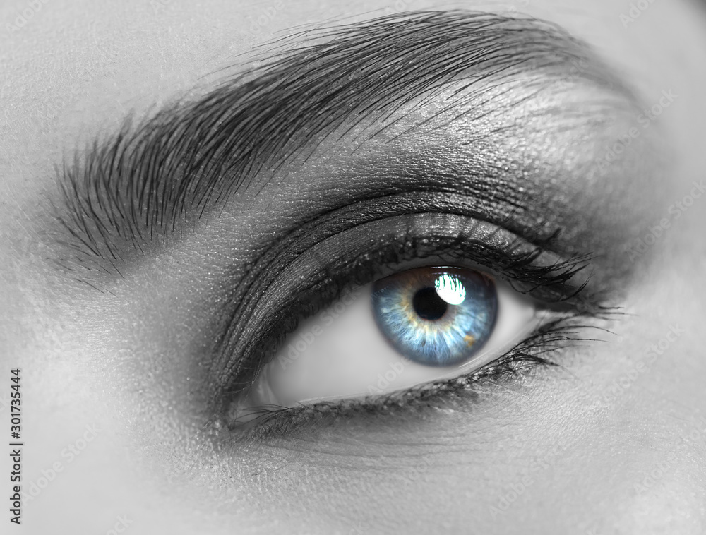 Fototapety, obrazy: Beautiful woman eye close-up. Young Woman Blue one eye macro shoot. Holiday smoky eyes make-up, Macro Closeup eye looking up, closeup. Eyelashes, eyebrows, iris close-up. Black and white