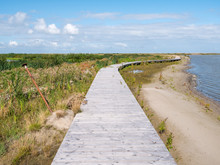 Boardwalk Path Of Nature Trail On Manmade Island Of Marker Wadden In Markermeer, Netherlands