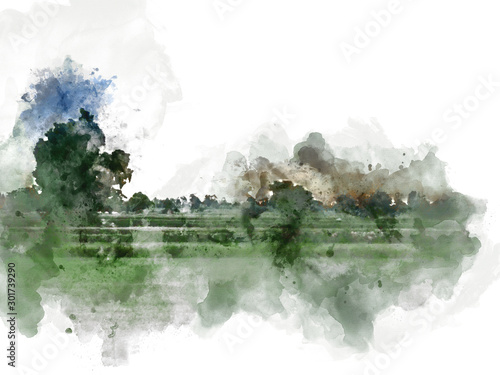 Montage in der Fensternische Olivgrun Abstract tree and field landscape in Thailand on watercolor illustration painting background.