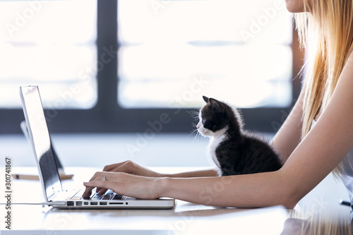 Pretty little cat looking the laptop while its owner working with him at home Poster Mural XXL
