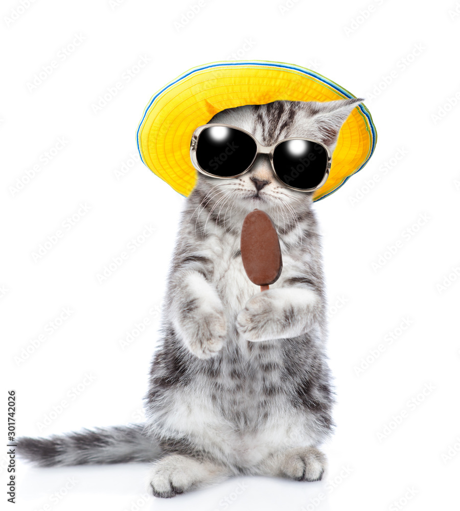 Tabby kitten wearing a summer hat and sunglasses holding ice cream. isolated on white background