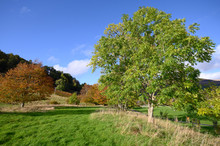 Breadalbane Public Park In Killin, Scotland.  The Village Of Killin Is Within The Loch Lomond And Trossachs National Park.