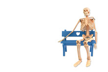 Human Skeleton Is Sitting On The Bench