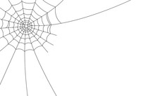 Halloween Spider Web And Spiders Isolated On White Background