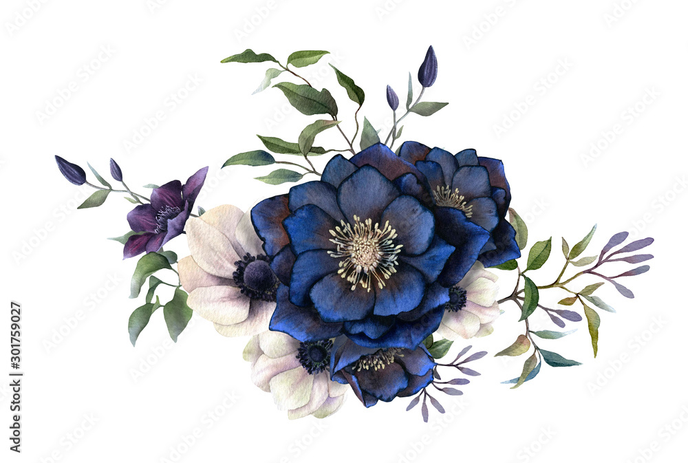 Fototapety, obrazy: Picturesque arrangement of dark hellebores, anemones and clematises branches hand drawn in watercolor isolated on white background.Watercolor illustration.Ideal for creating invitations, wedding cards