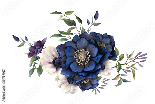 Picturesque arrangement of dark hellebores, anemones and clematises branches hand drawn in watercolor isolated on white background.Watercolor illustration.Ideal for creating invitations, wedding cards #301759027