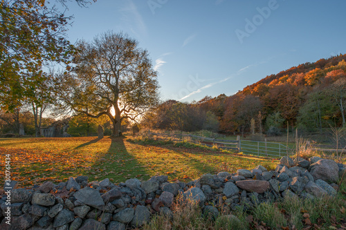 The Countryside Of Ostergotland At Omberg During Autumn In Sweden Buy This Stock Photo And Explore Similar Images At Adobe Stock Adobe Stock