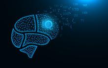 Brain Areas, Intelligence Quot...