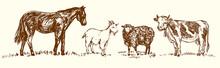 Farm Animal Collection, Horse,...